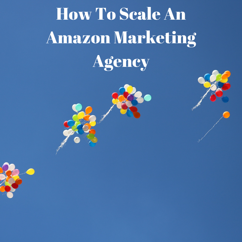 WhitePaper #1: How To Scale An Amazon Marketing Agency